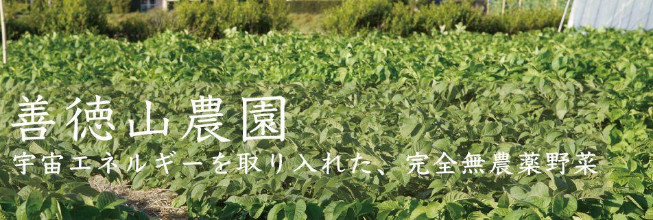 善徳山農園